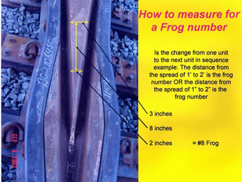 How to measure for a Frog number